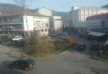 Posječeno drveće u Njegoševoj ulici
