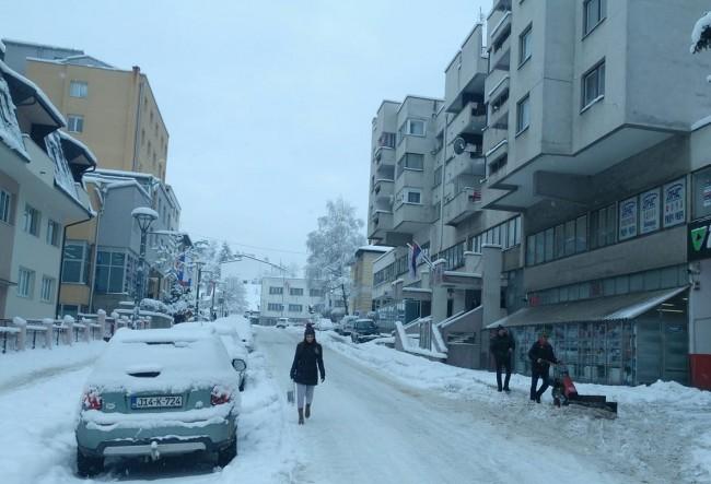 snijeg insp 2