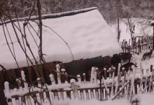 Vito zimuje sa vukovima i ne gubi nadu da će obnoviti imanje i uz pomoć dobrih ljudi izgraditi novi dom