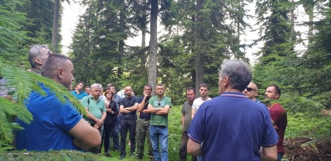 Zavait: Predavanja o šumama- male HE prijetnja šumskom blagu